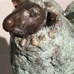 detail schaap